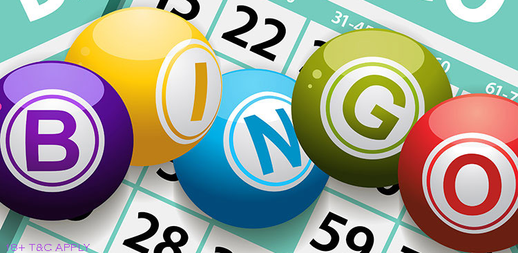 Top Bingo Sites UK