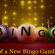 History of a New Bingo Gambling Site
